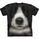 Border Collie Youth T-Shirt Boxed