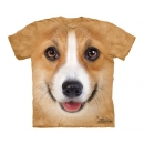 Corgi Youth T-Shirt Boxed