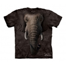 Elephant Youth T-Shirt Boxed