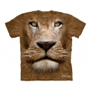 Lion Youth T-Shirt Boxed