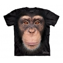 Chimp Youth T-Shirt Boxed
