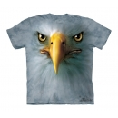 Eagle Youth T-Shirt Boxed