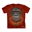 Orangutan Youth T-Shirt Boxed